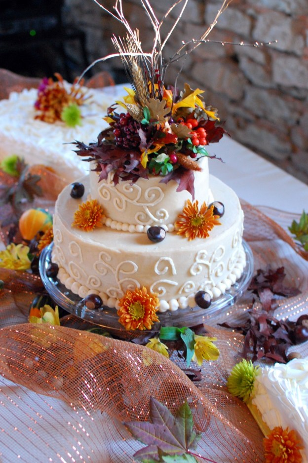 Brooke's wedding cake!  (Thank you Brooke, for supplying me a picture!)