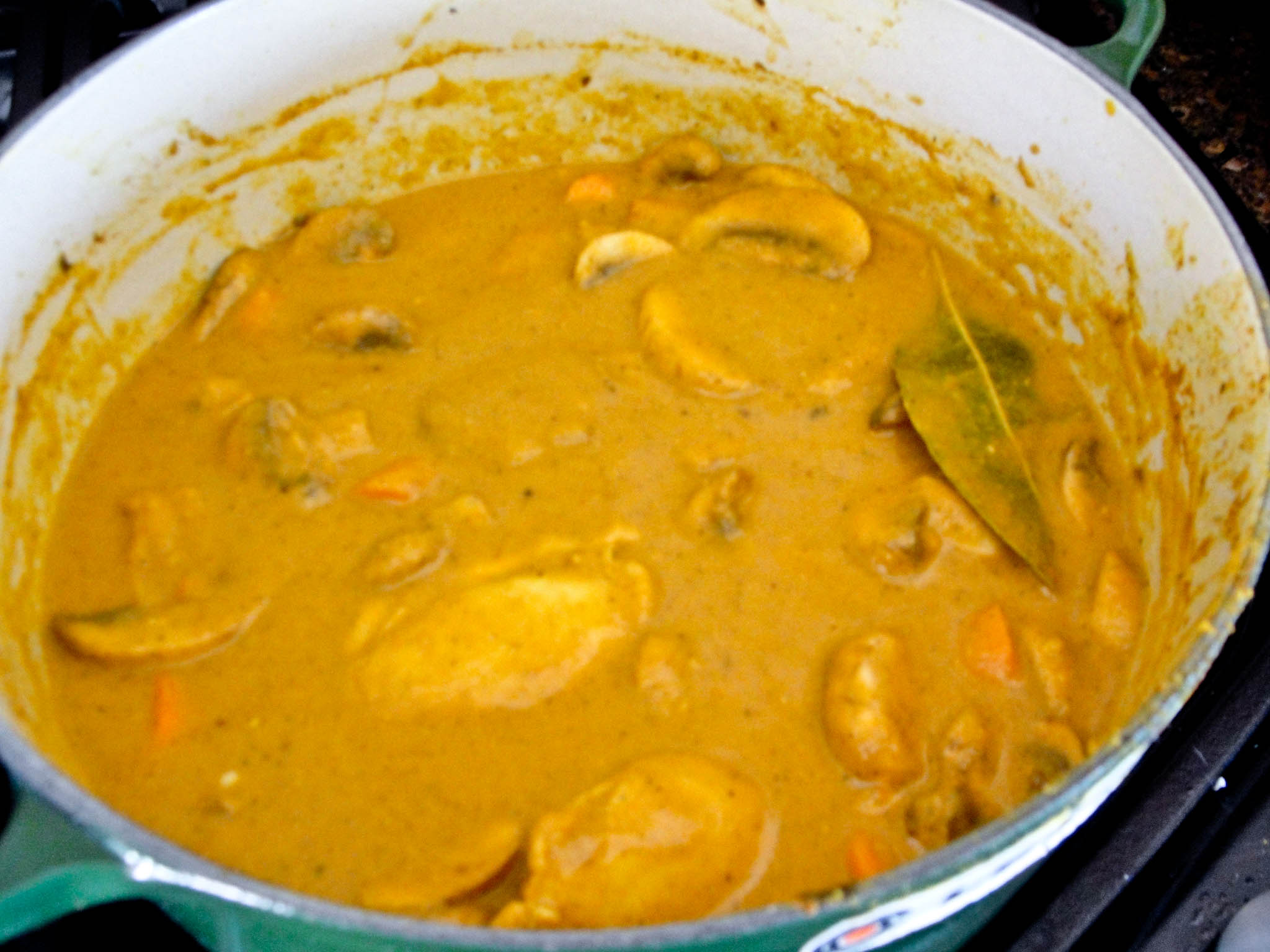 Home style chicken masala indian spiced chicken stew my fancy pantry i forumfinder Choice Image
